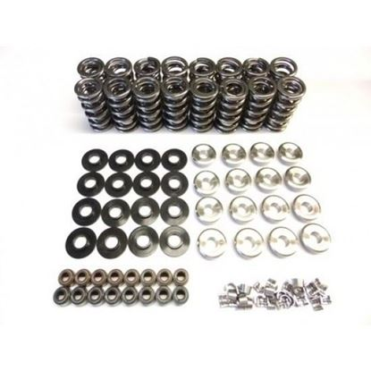 """Picture of .660"""" LIFT PLATINUM SPRING KIT SK001"""